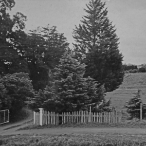 front gate grayscale.jpg