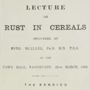 Lecture on rust in cereals