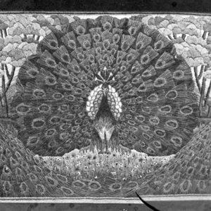 Tapestry (peacocks)