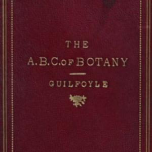 guilfoyle1880abcbotany.pdf